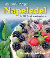 Joan van Rooijen – Napeledel PDF
