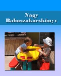 Vida Ágnes: Nagy babaszakácskönyv PDF