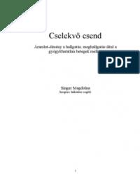 Singer Magdolna: Cselekvő csend PDF